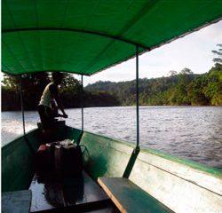 Biologar - Amazonia