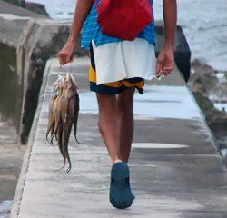 menino com fieira de peixes
