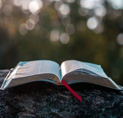 A Bíblia - Rumo ao reencontro